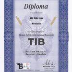 Diploma SM TECH TIB 2011 Bucuresti
